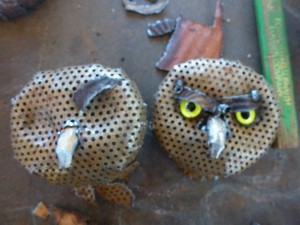 Owls sort of do look angry.